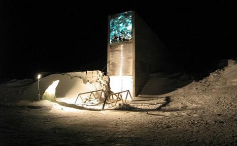 [VIDEO] ¿Qué esconden los científicos en la 'bóveda del fin del mundo'?   Acuario   Scoop.it