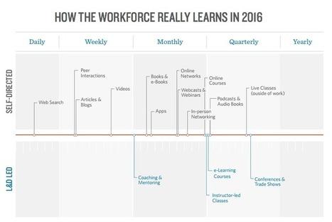 Must-Read Studies of 2016 to Understand the Modern Workforce | Strategic Career Development | Scoop.it