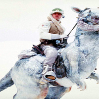 Science Proves Luke Skywalker Should Have Died In The Tauntaun's Belly | Browsing around | Scoop.it