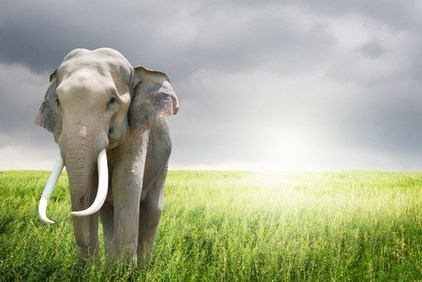 It's everywhere! The day Hadoop took over the cloud | it security | Scoop.it