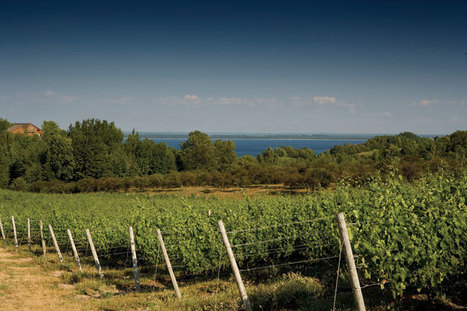 Traverse City becomes wine destination | Winecations | Scoop.it