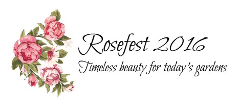 Rosefest 2016: Timeless beauty for today's gardens | All Things Rose | Scoop.it