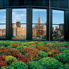 Green Roofs — National Geographic Magazine | Benhil - Rooftop garden | Scoop.it