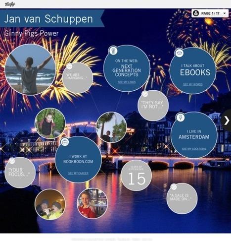 Jan van Schuppen's Vizify Bio   Overview   personal branding nl   Scoop.it