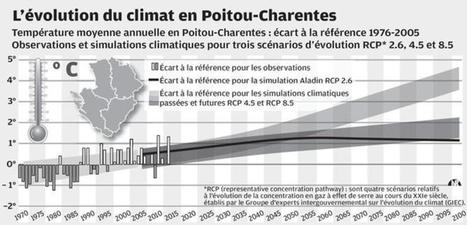 Et si le Poitou devenait le nouveau Bordelais... | Histoire, Patrimoine, Nature en Loudunais | Scoop.it