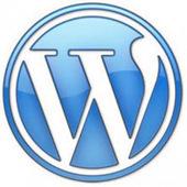 Most Popular Security Plugins for WordPress | | DevWebProDevWebPro | Wordpress Development | Scoop.it