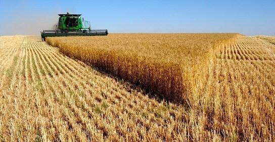 Maroc: Aléas climatiques et assurance agricole ne vont pas de pair