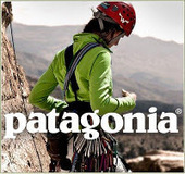 The GREEN MARKET: Patagonia Shows the Way with Responsible Business Leadership
