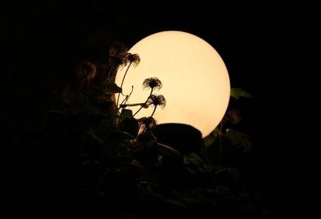 ¿Qué es la luz? - ALTFoto | exposició | Scoop.it