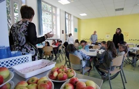 Comment les cantines de Rennes contournent la loi pour manger local | ECONOMIES LOCALES VIVANTES | Scoop.it