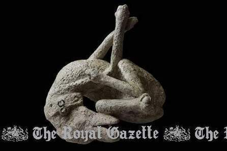 London museum highlights last days of Pompeii - Royal Gazette   FIT,For Italy Tourism   Scoop.it