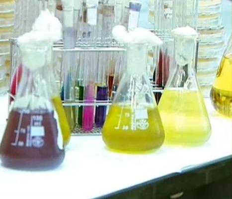 Preparación de Medios de Cultivo | Microbiología Básica Aplicada | Scoop.it