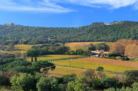 Oenotourisme : la Route des Vins de Provence inaugurée en juin   Oenotourisme   Scoop.it