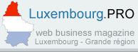Le Grand Duché de Luxembourg perd de sa compétitivité | Luxembourg.pro | Luxembourg (Europe) | Scoop.it