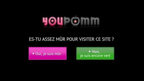 SNCF, Joey Starr, Paris Hilton : cinq preuves que le porno n'est plus honteux | Against pornography | Scoop.it
