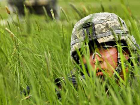 How The US Army Spent An Entire War Figuring Out What Camouflage To Wear - Business Insider | militarisation | Scoop.it