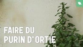 Purins - YouTube | Jardin Potager Biologique | Scoop.it