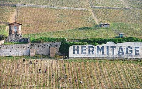 Oenotourisme en Vallée du Rhône   Tourisme viticole en France   Scoop.it