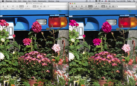 Fujifilm X-Trans RAW (RAF) processed in Capture One 7.0.2 Beta vs Lightroom 4.2 | Capture One Post Processing | Scoop.it