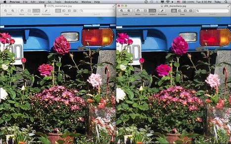 Fujifilm X-Trans RAW (RAF) processed in Capture One 7.0.2 Beta vs Lightroom 4.2 | Capture One Post Processing | Scoop.it