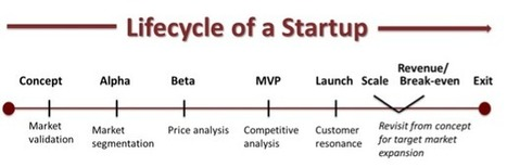 Startup Market Research: How to Ask the Right Questions - Magnetude Consulting | B2B Startup Marketing | Scoop.it