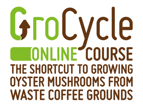 Grow Oyster Mushrooms on Waste Coffee Grounds - GroCycle Online Mushroom Growing Course — Grow Mushrooms on Coffee | Innovative Marketing and Crowdfunding | Scoop.it