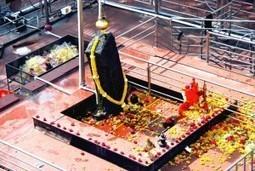 न्याय के देवता शनिदेव – शनिजयंती के दिन कैसे प्रसन्न करें | Ketan Astrologer Blog | Best astrologer in India | Scoop.it