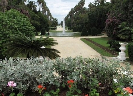 Le Jardin d'essai d'Alger, un joyau méconnu | Arboretums, parcs et jardins,jardin botanique | Scoop.it