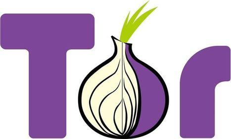 Le FBI serait mêlé à une attaque du réseau Tor | Knowledge Management | Scoop.it