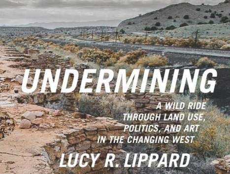 Lucy Lippard Launches Her New Book | Social Art Practices | Scoop.it