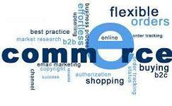 Five Things An E-Commerce Website Should Have | Logicspice UK | LogicSpice.co.uk | Scoop.it