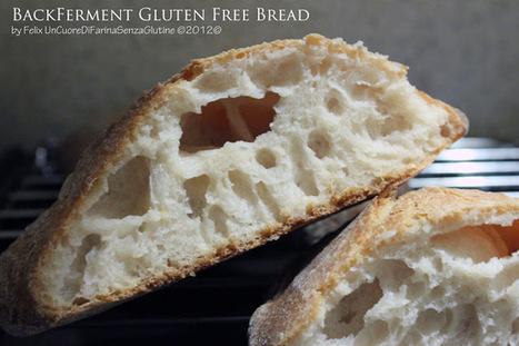 Uncuoredifarinasenzaglutine: BackFerment Gluten Free Bread | celiachia network | Scoop.it