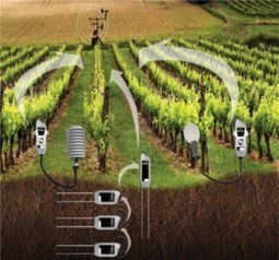 Uso de sensores en la agricultura | iRiego | Scoop.it