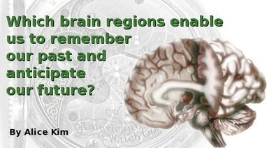 Which brain regions enable us to remember our past and anticipate our future?   Science & Consciousness Review   Subjective well-being   Scoop.it