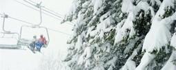 Best Ski Runs in Whistler   Whistler, BC, Canada   Scoop.it