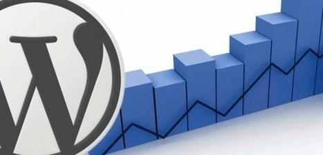 Guide complet pour optimiser votre référencement sous WordPress - Developpez.com | Blog | Scoop.it