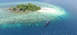 Komodo Liveaboard Diving | Water Boats | Scoop.it