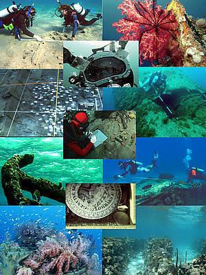 Tutorial | United Nations Educational, Scientific and Cultural Organization | Archéologie et Patrimoine | Scoop.it