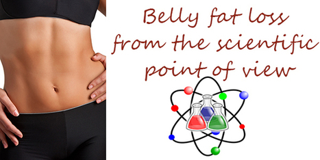 Belly fat loss from the scientific point of view | Health and fitness | Scoop.it