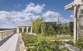 Green thumbs up for roof-top design - Hartford Business | Vertical Farm - Food Factory | Scoop.it