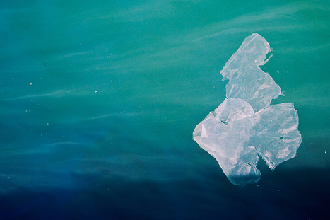 Plastics highly concentrated in Australian waters - Phys.org   OCEANTRASH   Scoop.it