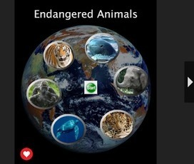 Endangered Animals Book & Poster Project | Cool Tools for 21st Century Learners | Scoop.it