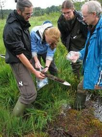 New peatland bacteria feed on greenhouse gas and excess fertilizer | Amazing Science | Scoop.it