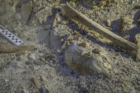 Archaeologists find 2,000-year-old human skeleton at Mediterranean shipwreck | News in Conservation | Scoop.it