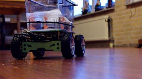 Awesome hack lets fish drive its fish tank like a tank - Geek   Arduino, Netduino, Rasperry Pi!   Scoop.it