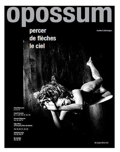 revue Opossum | L'Univers passe | Scoop.it