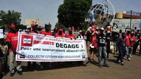 De Paris à Ouagadougou, mobilisation de milliers de manifestants contre Monsanto | Questions de développement ... | Scoop.it
