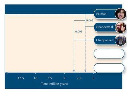 La bioinformática con papel y lápiz: construcción de un árbol filogenético | Science in School | Curso SEP + Bunam | Scoop.it