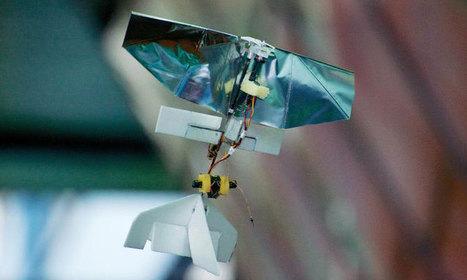 Le plus petit drone du monde fait la taille d'une libellule et il vous sauvera peut-être la vie | Webmarketing seo | Scoop.it