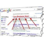 Contribution Of SEO Service Providers To The Business | Alice Hilton | Scoop.it
